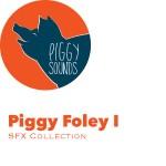 foley I